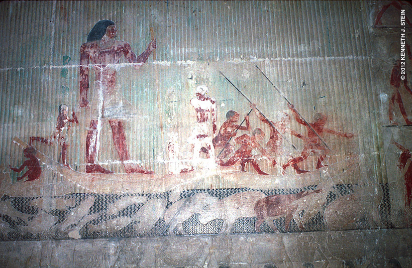 Ti was a supervisor of the pyramids (2474 BC). In this scene, he is out with his men on a hippopotamus hunt. Note the many fish species below the papyrus boat that include: upside-down catfish, elephant fishes, Tilapia, puffer fish, Egyptian eel, moonfish, catfish, and electric catfish. Ti's stature in society is shown by how he dwarfs his men.  Hippos and crocodiles are apparent on the right side of the panel and depicted the same size as the fish.