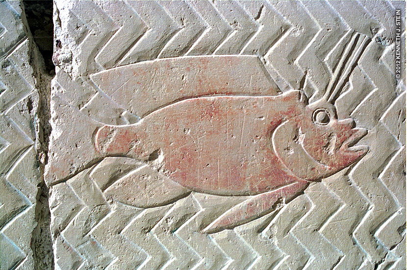 Scorpionfish from within the mortuary complex of Hatshepsut, the first female Pharaoh (1500 BC). Note that depictions from the newer Kingdoms are not as rich in detail as those from the older Kingdoms that you saw in the previous photos.